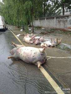 http://wpc2.narod.ru/02/china/flood_3.jpg