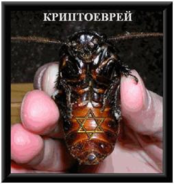 http://wpc2.narod.ru/02/crypto_bug.jpg